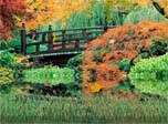 Autumn Wallpaper - Autumn Scenery Animated Wallpaper