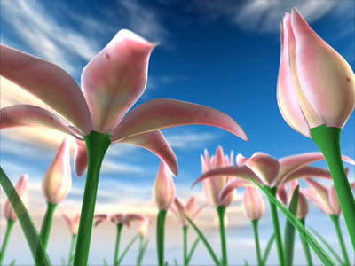 Flowers Meadow 3D
