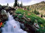 Bewitching Cascades - Windows 8 Nature Screensavers Download