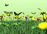 Natur-Bildschirmschoner - Butterflies Kingdom 3D - Screenshot #1
