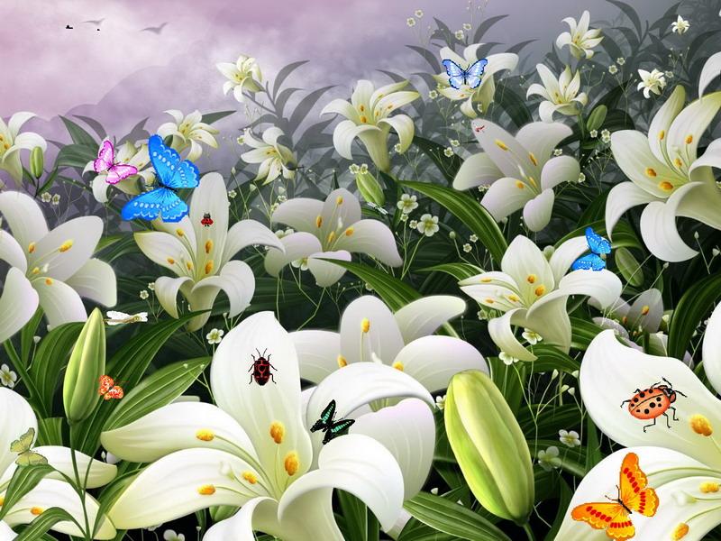 Flower Screensavers Flowers Healthy